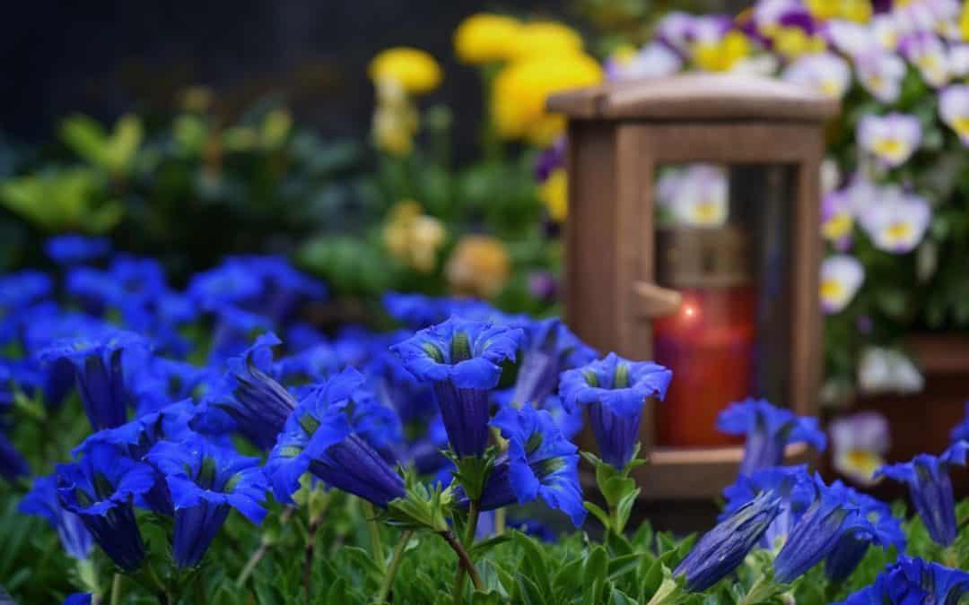 Friedhofssatzung – Was ändert sich und warum?