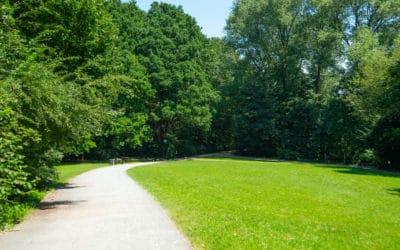 Bessere Pflege für Parks, Straßenbäume und öffentliche Grünanlagen